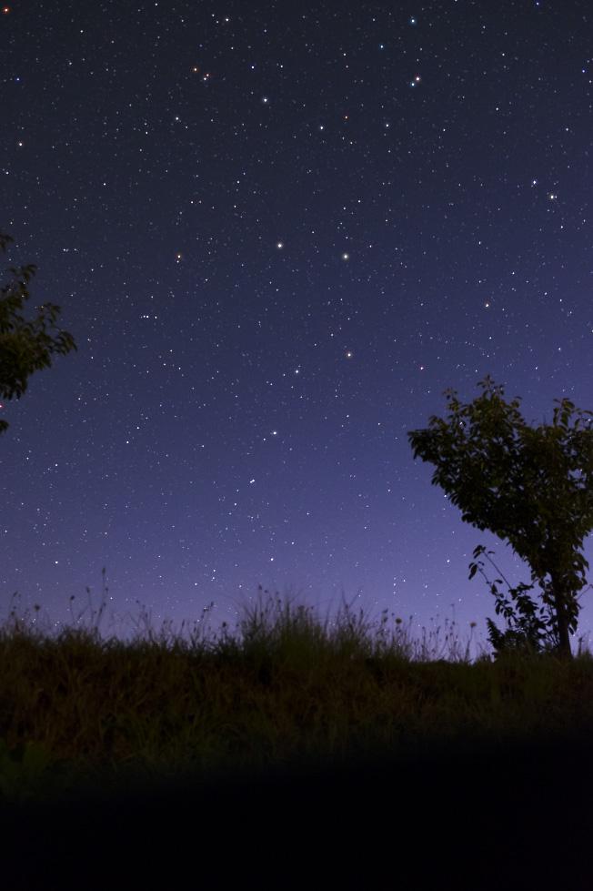 wespa tsubakiyama starscape 4