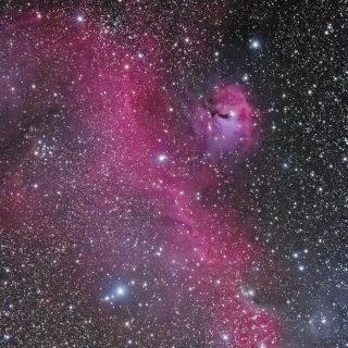 20131130-IC2177-seagull-nebula
