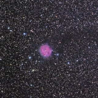 20130810-IC5146-cocoon-nebula