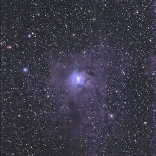 20130814-lbn487-ngc7023-iris