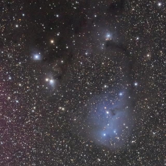 IC2169(かたつむり星雲)拡大