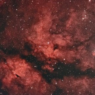 サドル付近の散光星雲