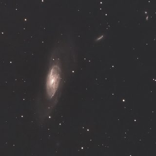 M106 りょうけん座の系外銀河