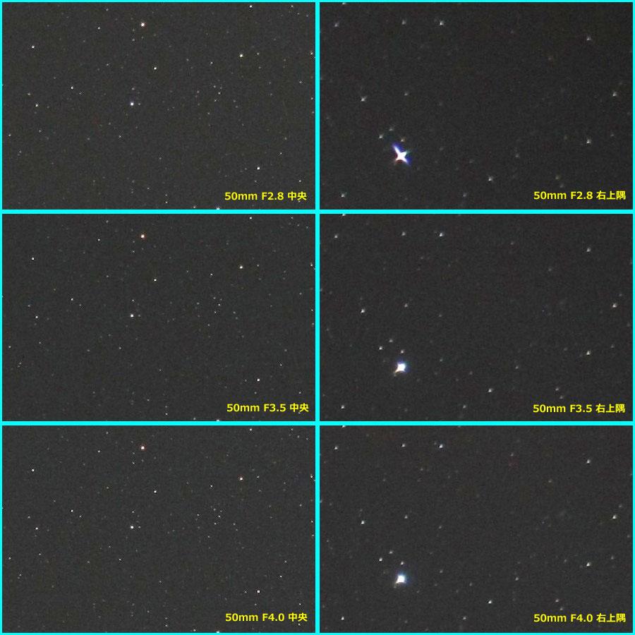 望遠端50mmのピクセル等倍画像