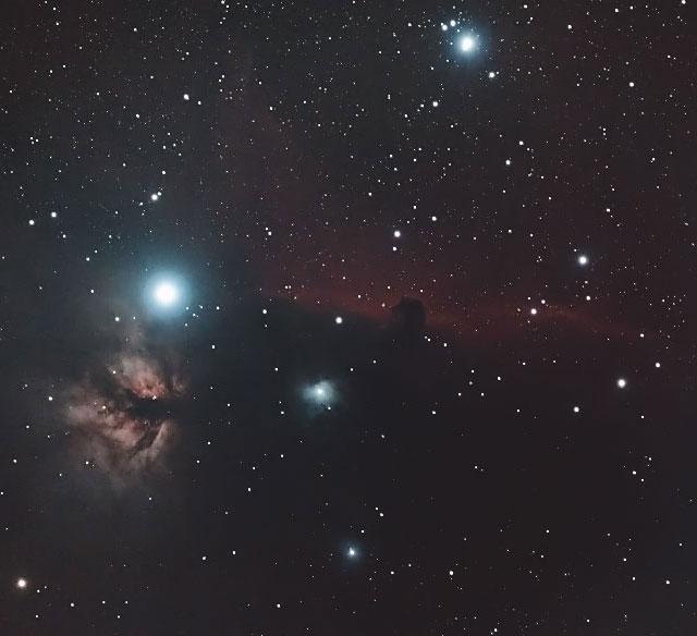 オリオン座の馬頭星雲と燃える木(NGC2024)