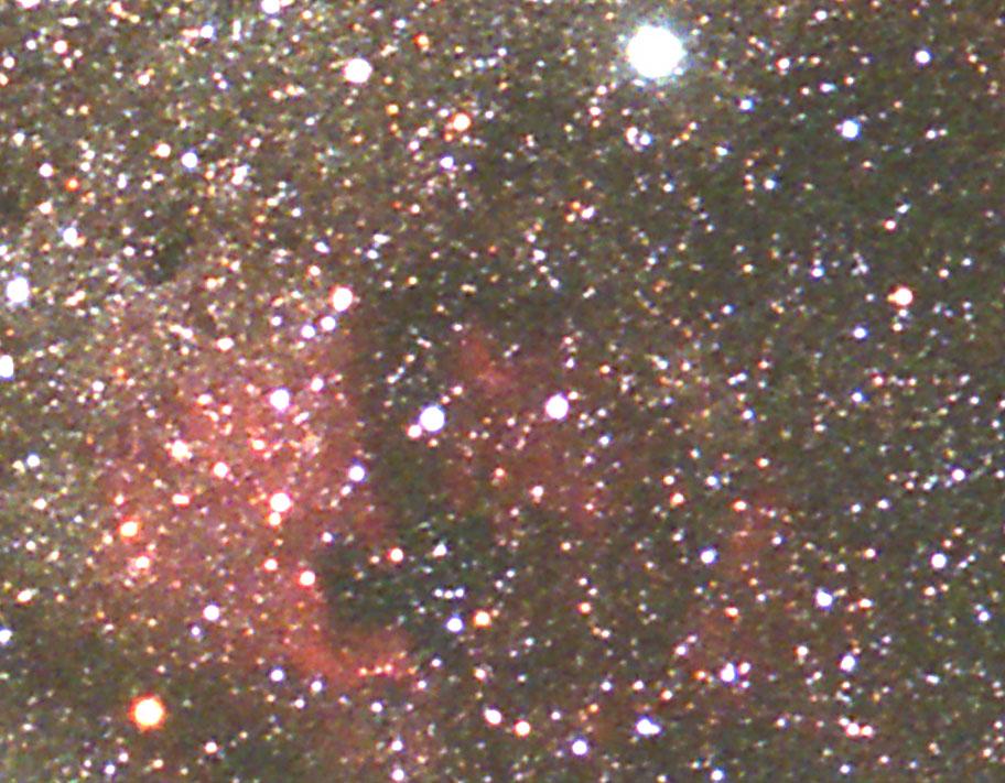 はくちょう座(銀塩)北アメリカ星雲付近ピクセル等倍