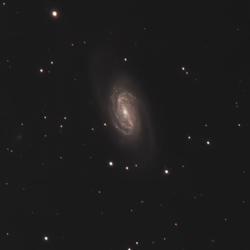 系外銀河 NGC2903