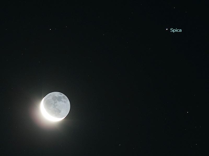 月とスピカ