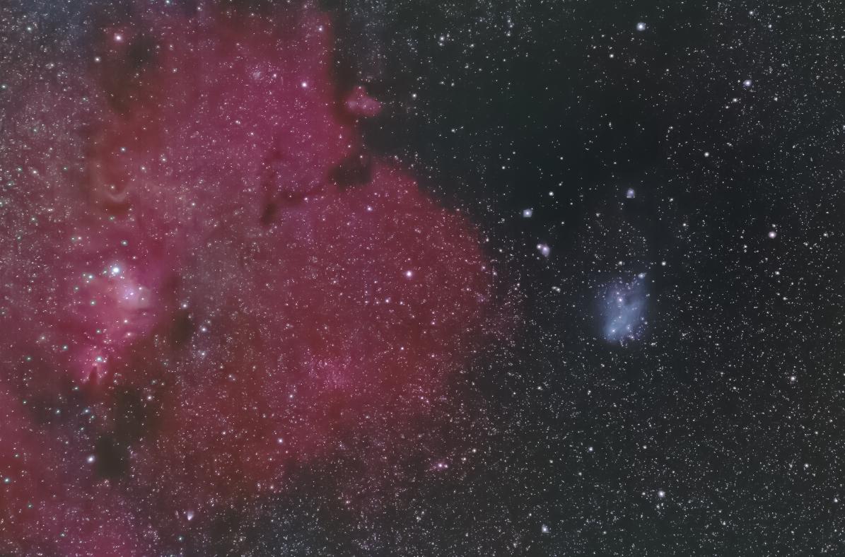 クリスマスツリー星団・コーン星雲&IC2169