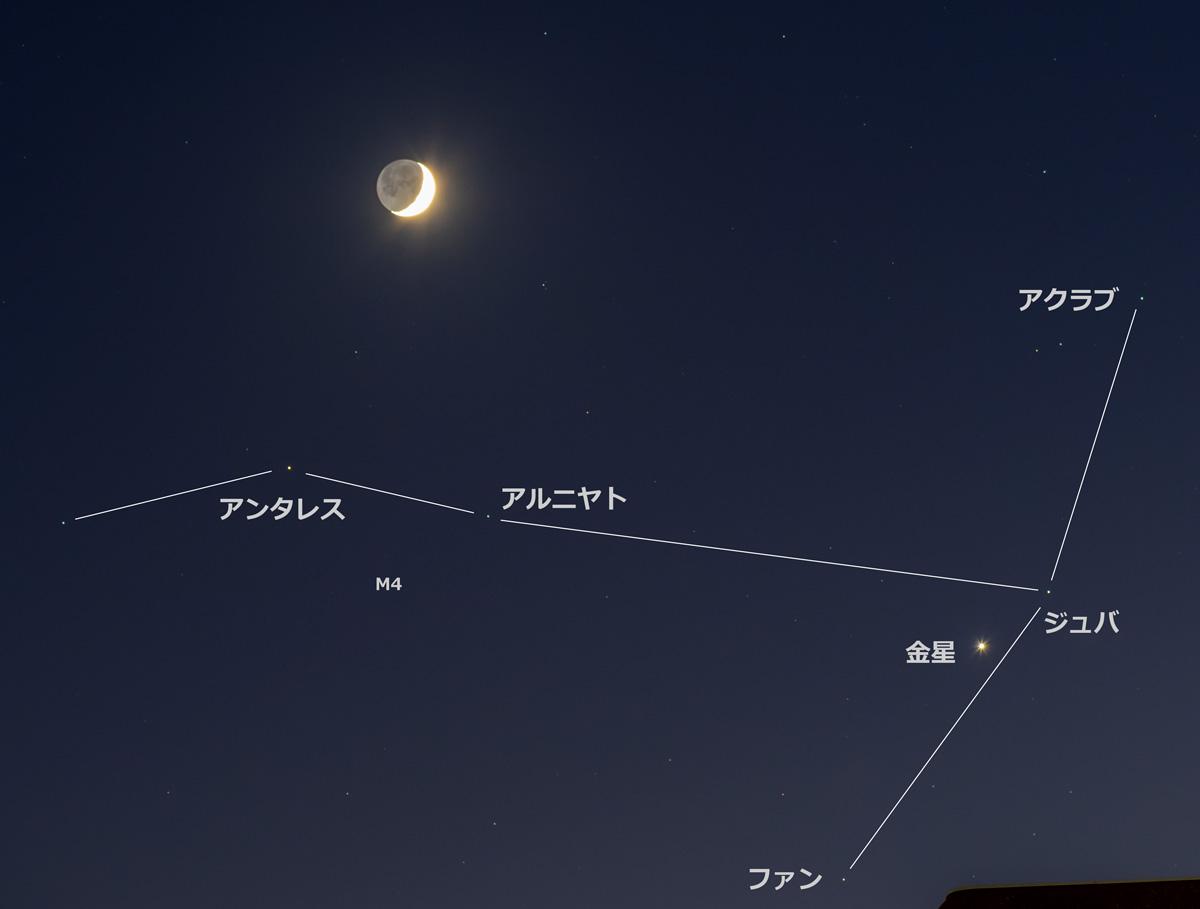 さそり座頭部にてアンタレスと接近した月と金星(星座線と星の名称入り)